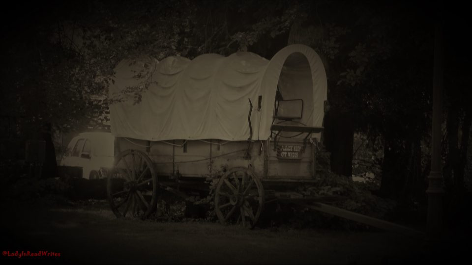 Wagon Black and White