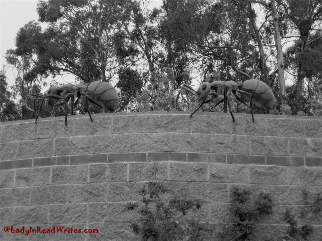 Gi-Ants