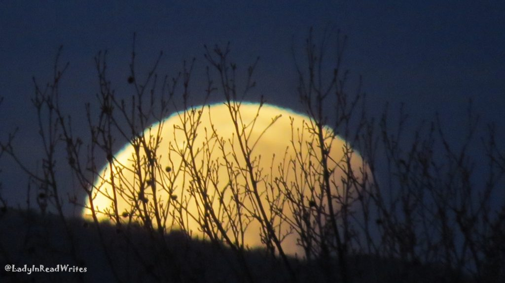 Lunar Eclipse Setting Moon